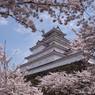 鶴ヶ城と桜⑤