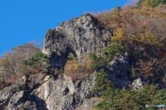 動物の様な岩
