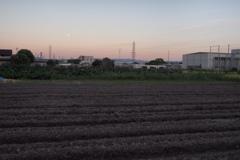 畝 と 月