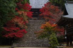 神護寺の紅 Ⅱ