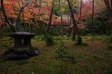 祇王寺と雨