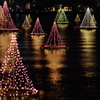 琵琶湖のクリスマスツリー
