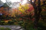 圓光寺の朝