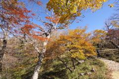 秋山トレッキング