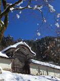 雪降りて後