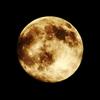 月がとっても綺麗だから