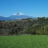 富士山と野菜畑