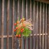 格子窓の秋