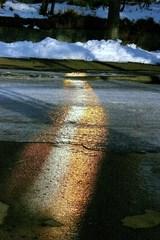 道路に出来た虹