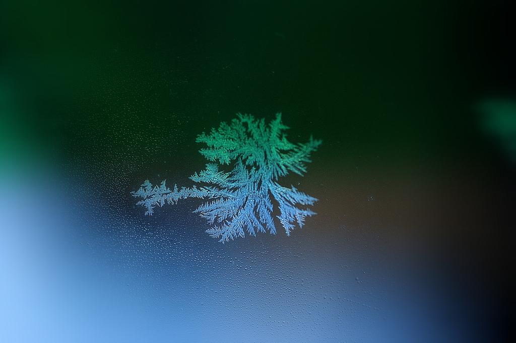 自然の結晶