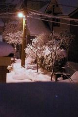 穏やかな雪の夜