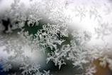 今朝の雪の結晶