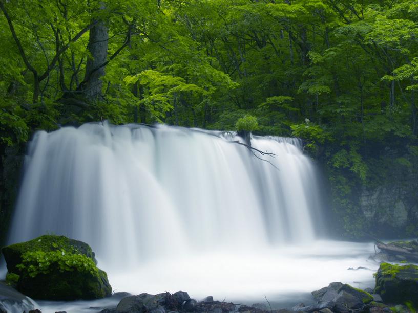 銚子大滝初夏