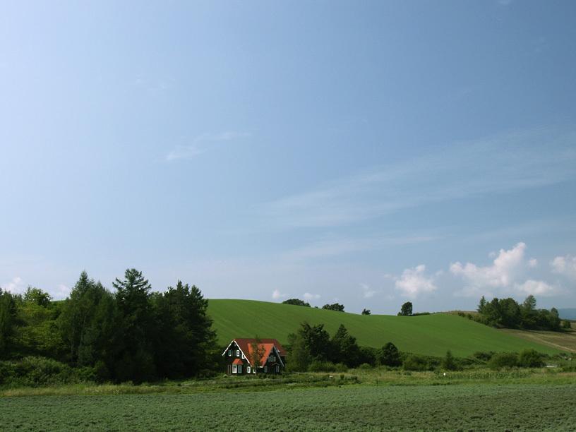 丘のふもとの赤い屋根の家