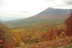 岩手山とスキー場の紅葉