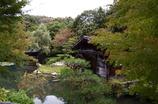 東山植物園:Cottage