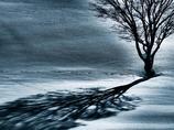 丘の孤木-2013 冬 《ドラマチックトーン-PL5版》