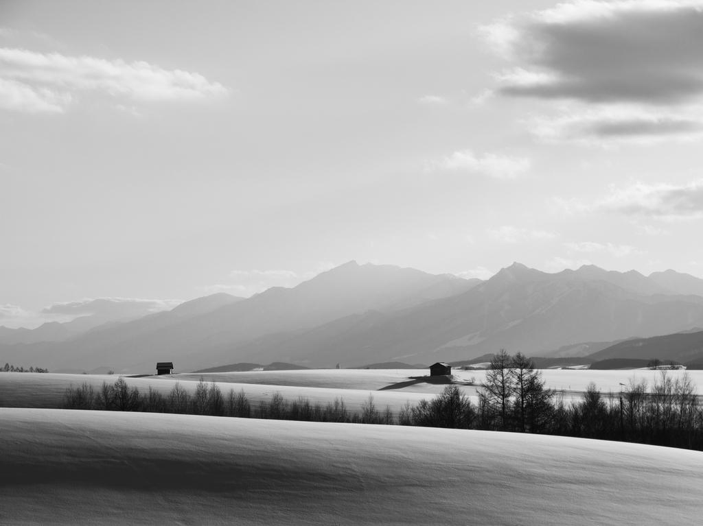 丘の冬ー2009