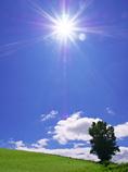 北の大地-夏の陽 2012