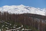 十勝岳-2014春