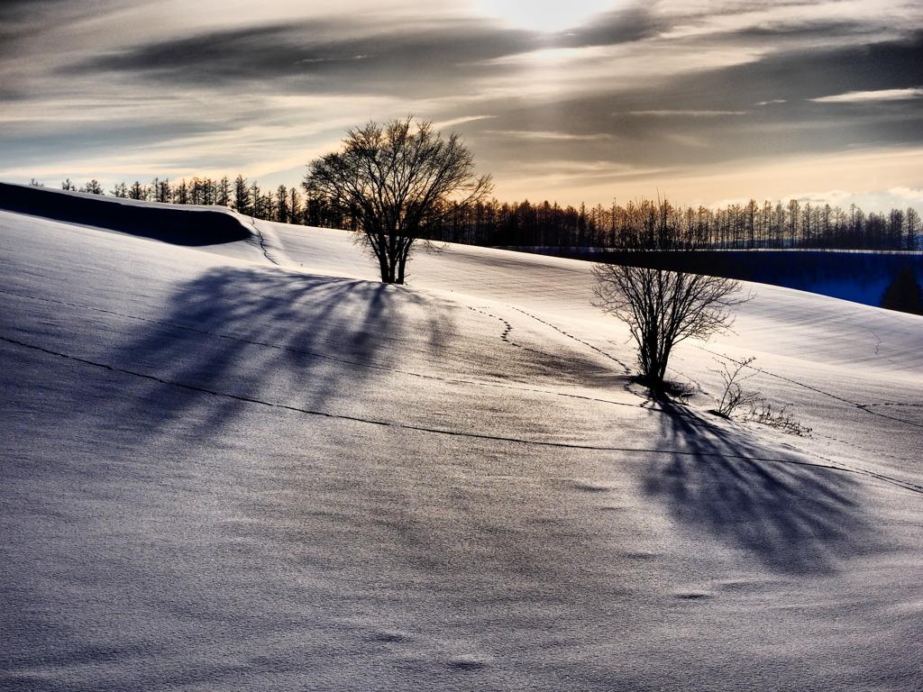 見送る冬日(ふゆび) 《M1 ドラマチックトーン版》