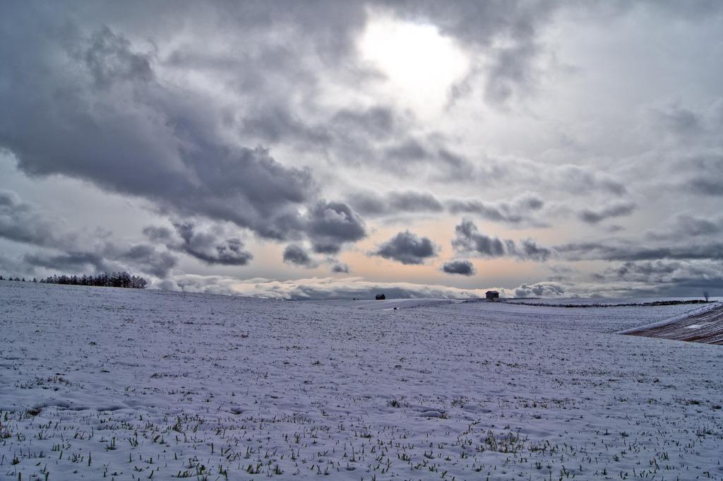 緑の番屋ー2009初冬