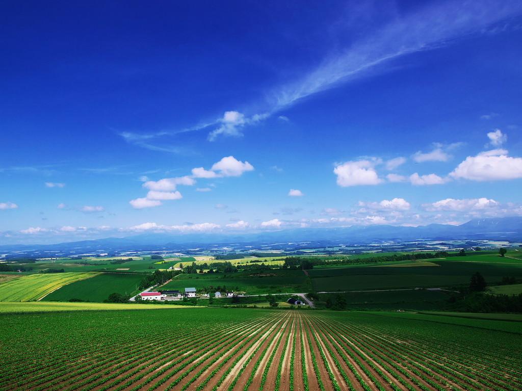飛行機雲流れる丘