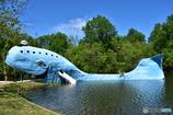 Blue Whale Catoosa, OK
