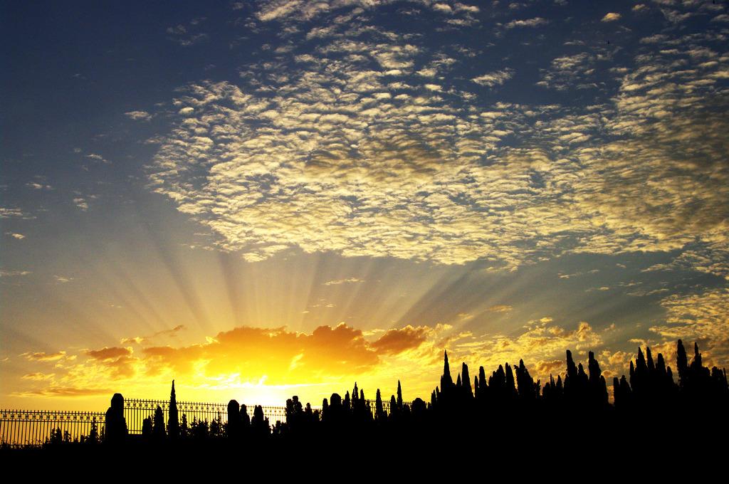 モロッコの朝