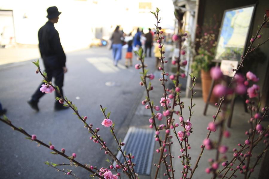 春のお祭り