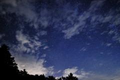 ペルセウス流星群2010①
