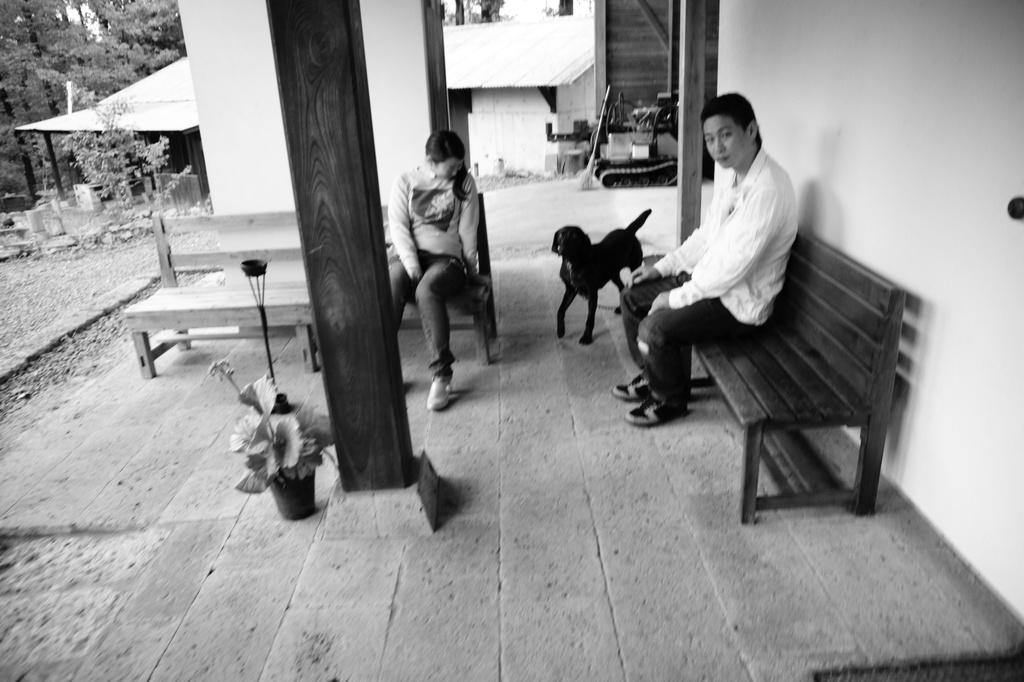 人と黒犬と人