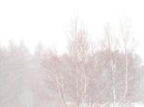 snow fall white