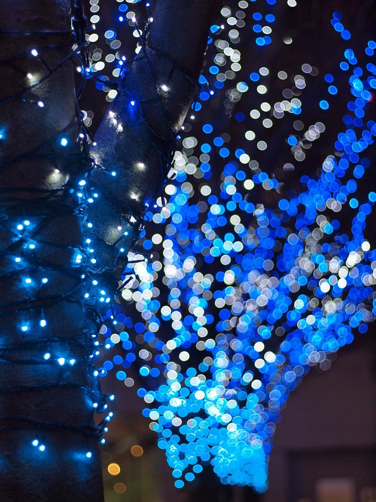 青色の街路樹