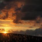 OLYMPUS E-P1で撮影した風景(sunset hill)の写真(画像)
