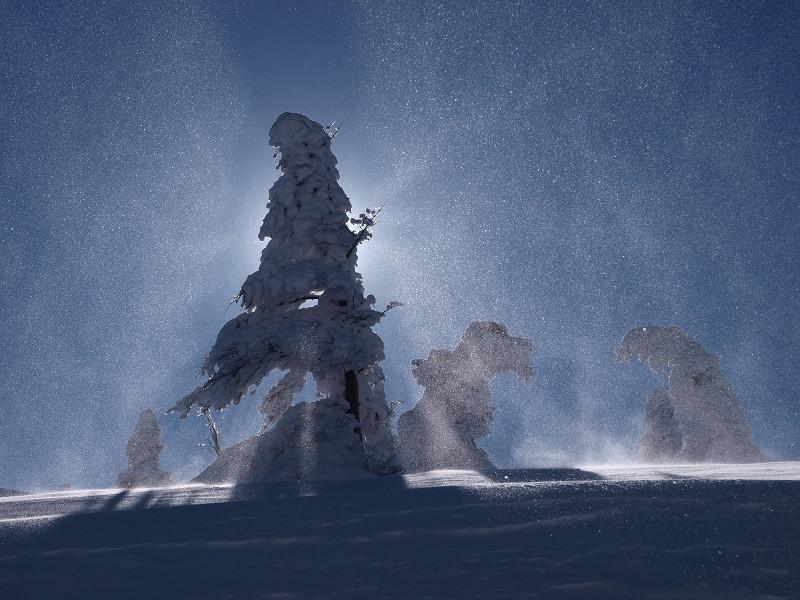 冬の北横岳にて(Scene11/40)