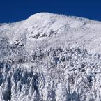 OLYMPUS E-1で撮影した(冬の北横岳にて(Scene1/40))の写真(画像)