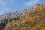 小池新道から笠ヶ岳