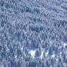 OLYMPUS E-30で撮影した(冬の北横岳にて(Scene16/40))の写真(画像)