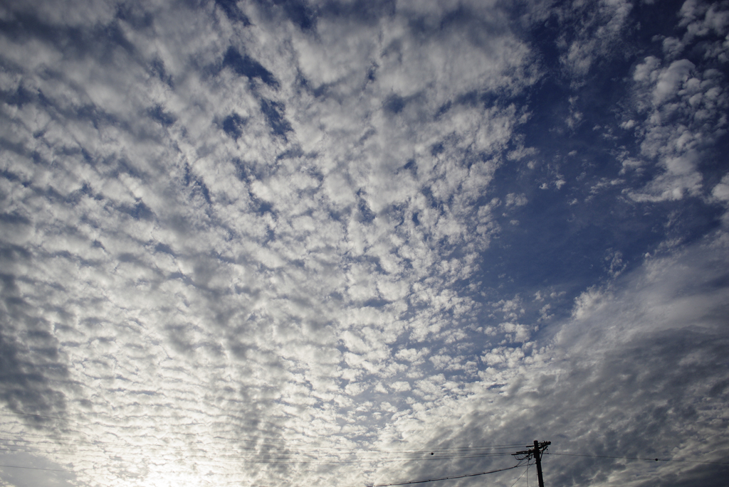 秋空に鰯雲_IMG1149