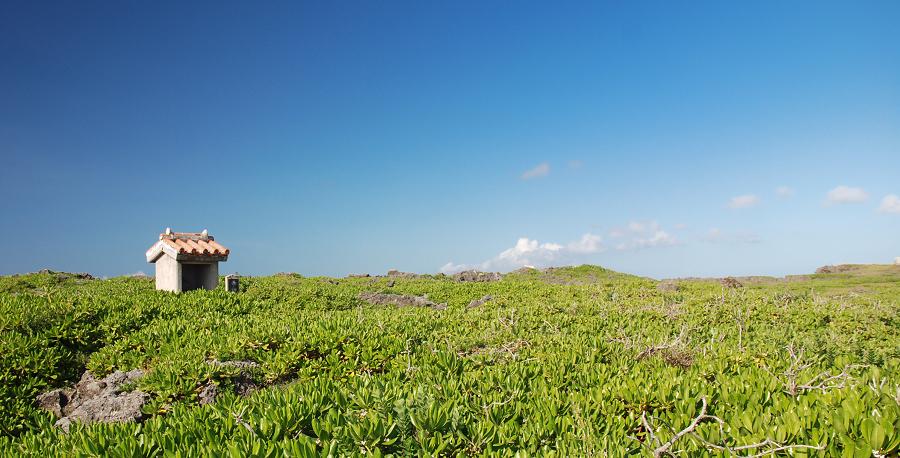沖縄3,4日