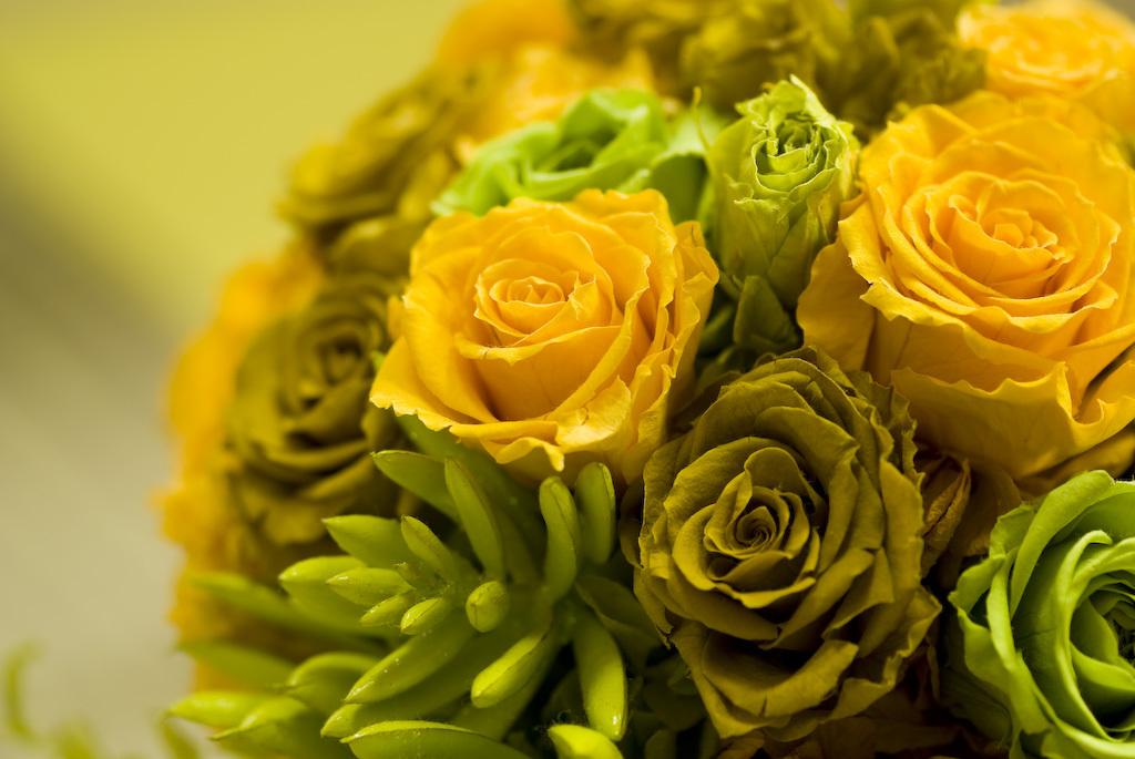 green yellow 1