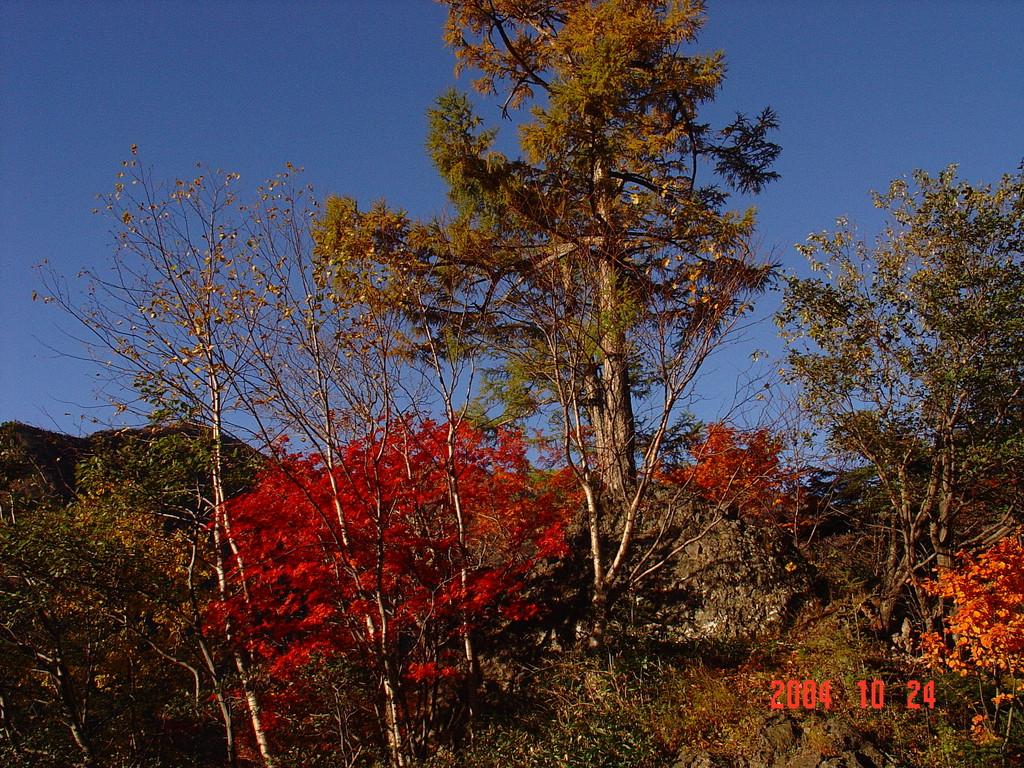 日光の紅葉DSC00025