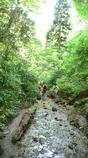 高尾山登山コース6号路(1)