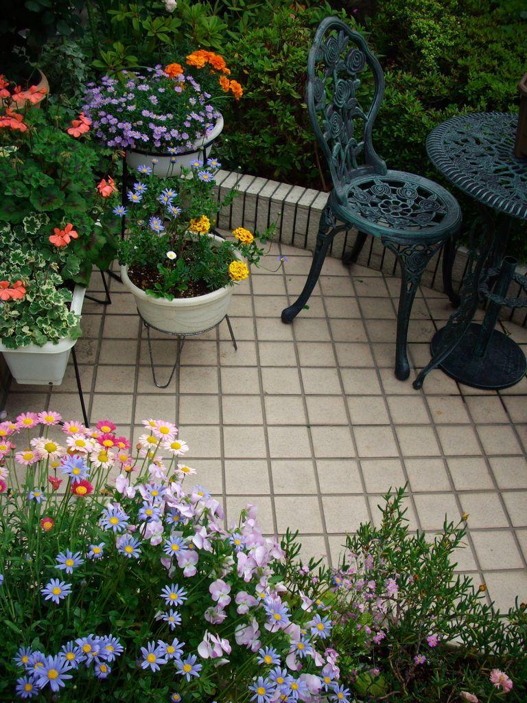 庭の風景 '08