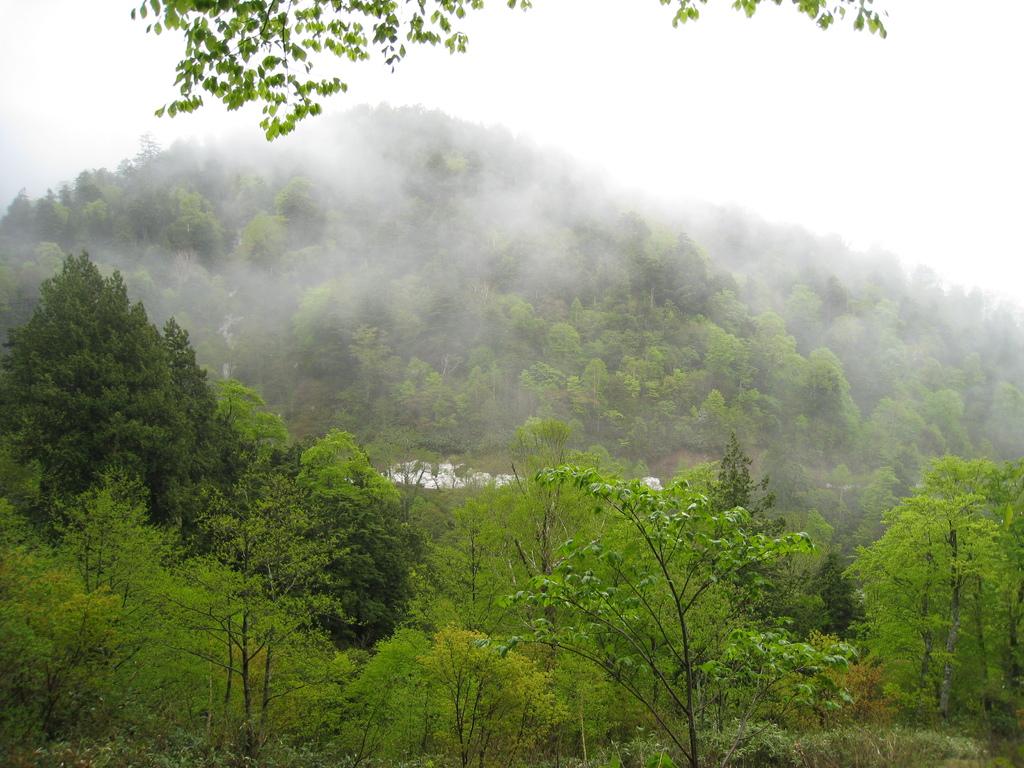 尾瀬 霧の山