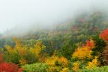霧の錦秋Ⅰ