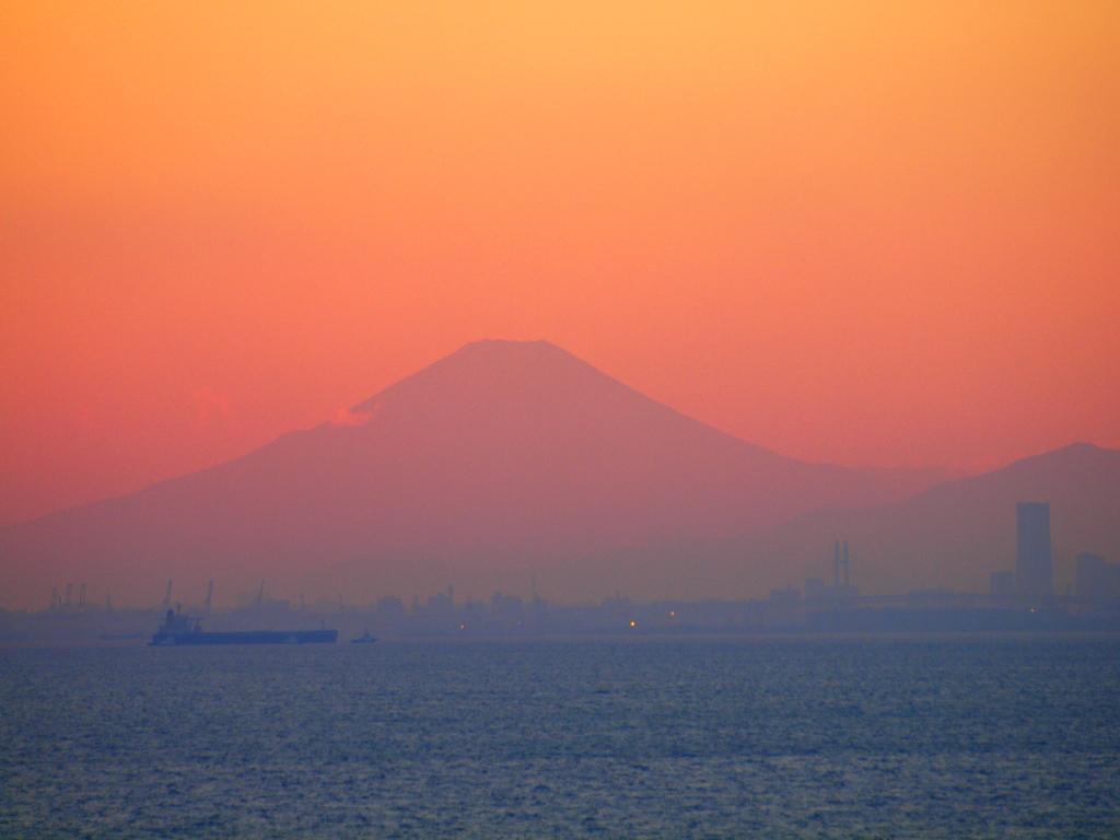 Popart 富士