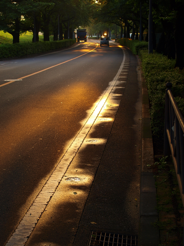 夕暮れのバス通り