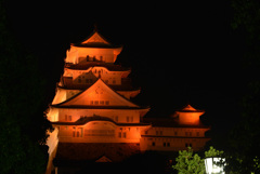 オレンジ色の姫路城 8